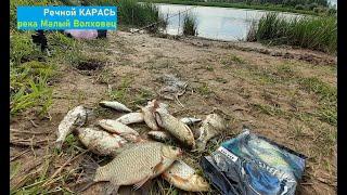 Рыбалка на речного карася и краснопёрку Река Малый Волховец Рыбалка на донку Кормим Real Big Fish