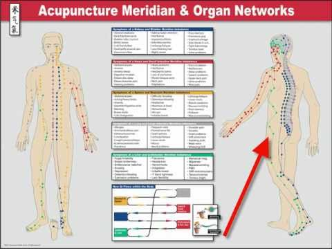 Acupuncture Meridian Channel Poster
