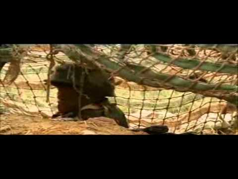 Indian Army Infantry Soldiers Travel Video
