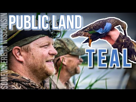 Public Land Teal Hunting 2019 | Early Season | Duck Hunting 2019