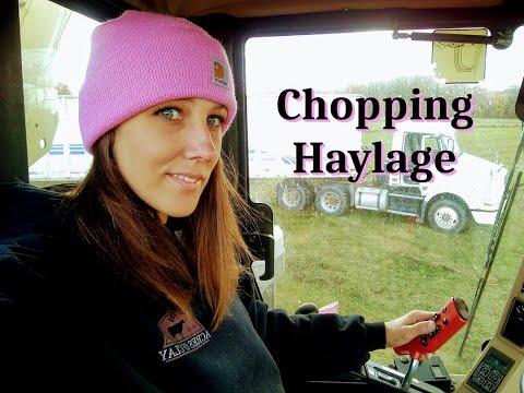 Chopping Last Cutting of Hay 2020