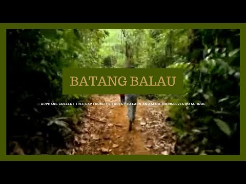 I-Witness: 'Batang Balau,' dokumentaryo ni Kara David (full episode)
