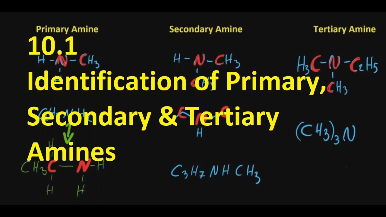 10 1 Identification of Primary, Secondary and Tertiary Amines [SL IB  Chemistry]