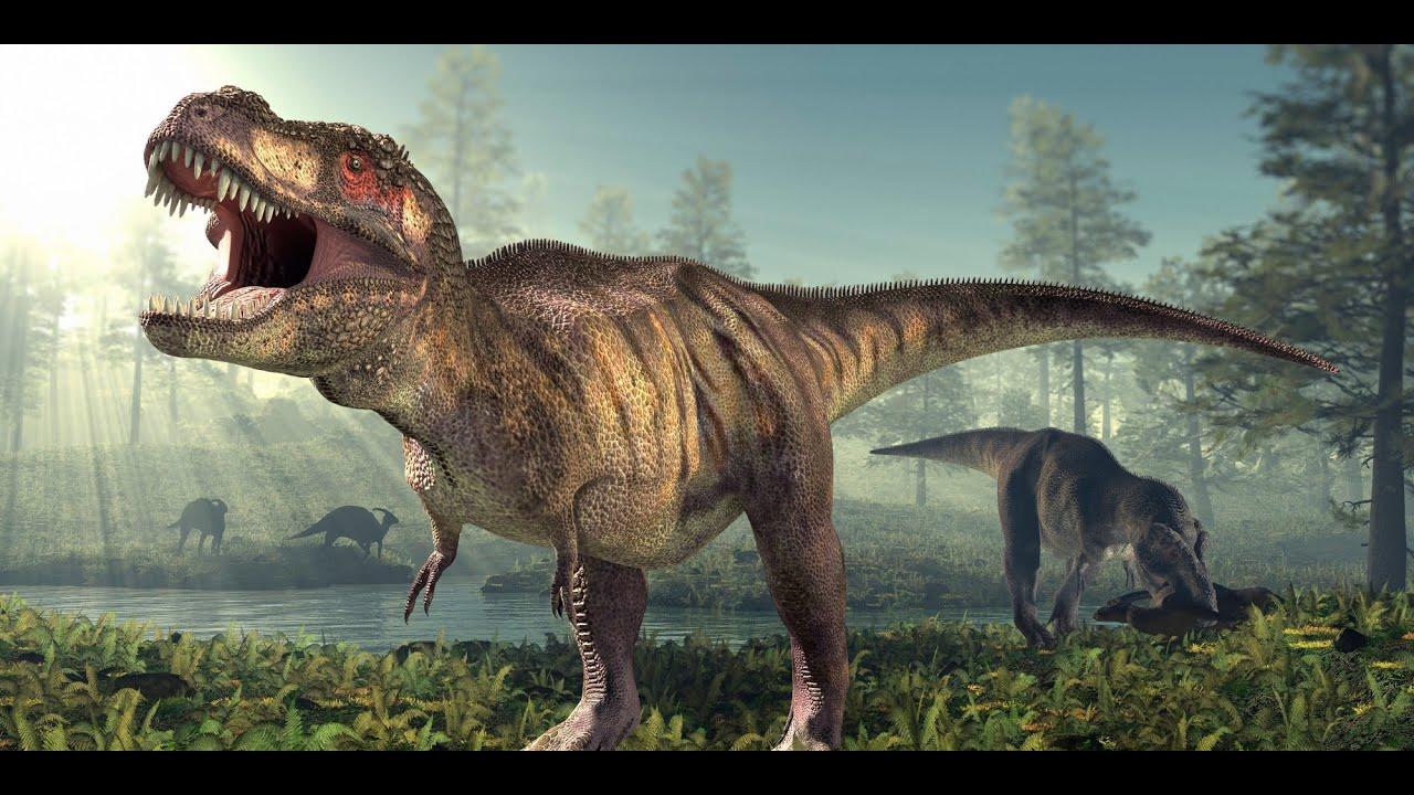 t-rex tyrannosaurus rex | dinosaurs cartoon short movie