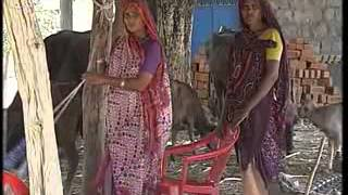 Janadesh: Problems faced by tribals in Dahod district of Gujarat (Hindi)