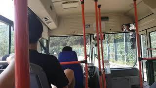 흑산도 마을버스 관광