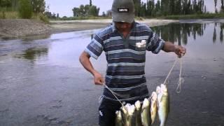 Рыбалка на речке Каратал 12 июля 2014