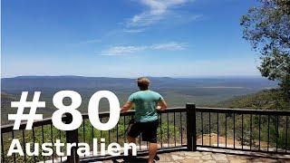 Blackdown Tablelands am Rande des Outbacks! || VLOG #80 || AUSTRALIEN