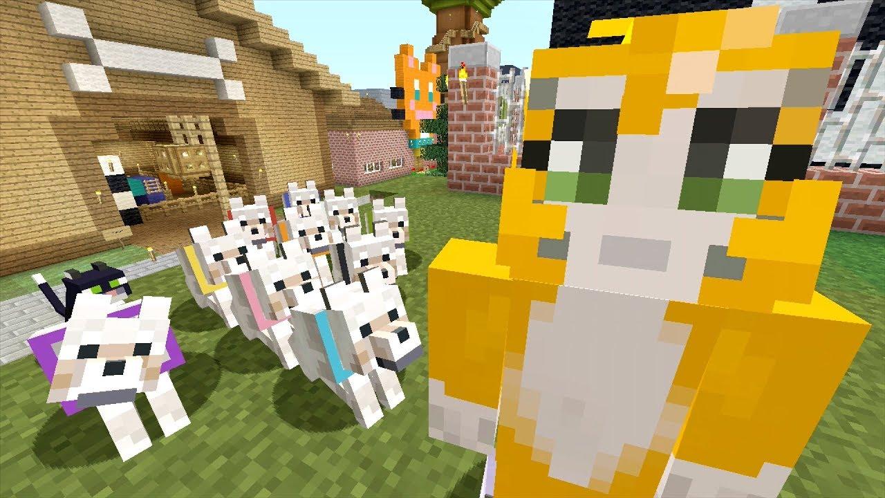 Dog Day Stampy Cat