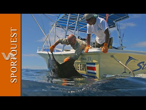 Mind Blowing Big Game Fishing Action at Crocodile Bay Resort Costa Rica