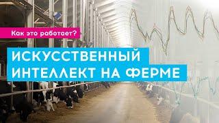 Искусственный интеллект на ферме | Как это работает