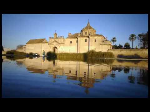 Ven a Sevilla   Come to Seville اشبيلية