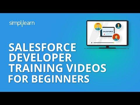 Salesforce Developer Training   Salesforce Training Videos For Beginners