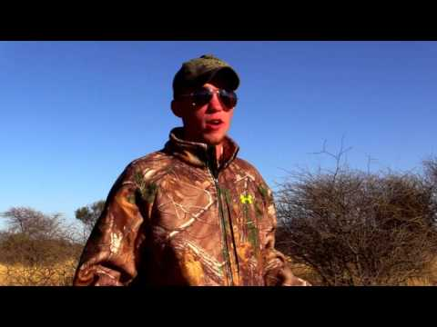 African lion hunting with bow and arrow