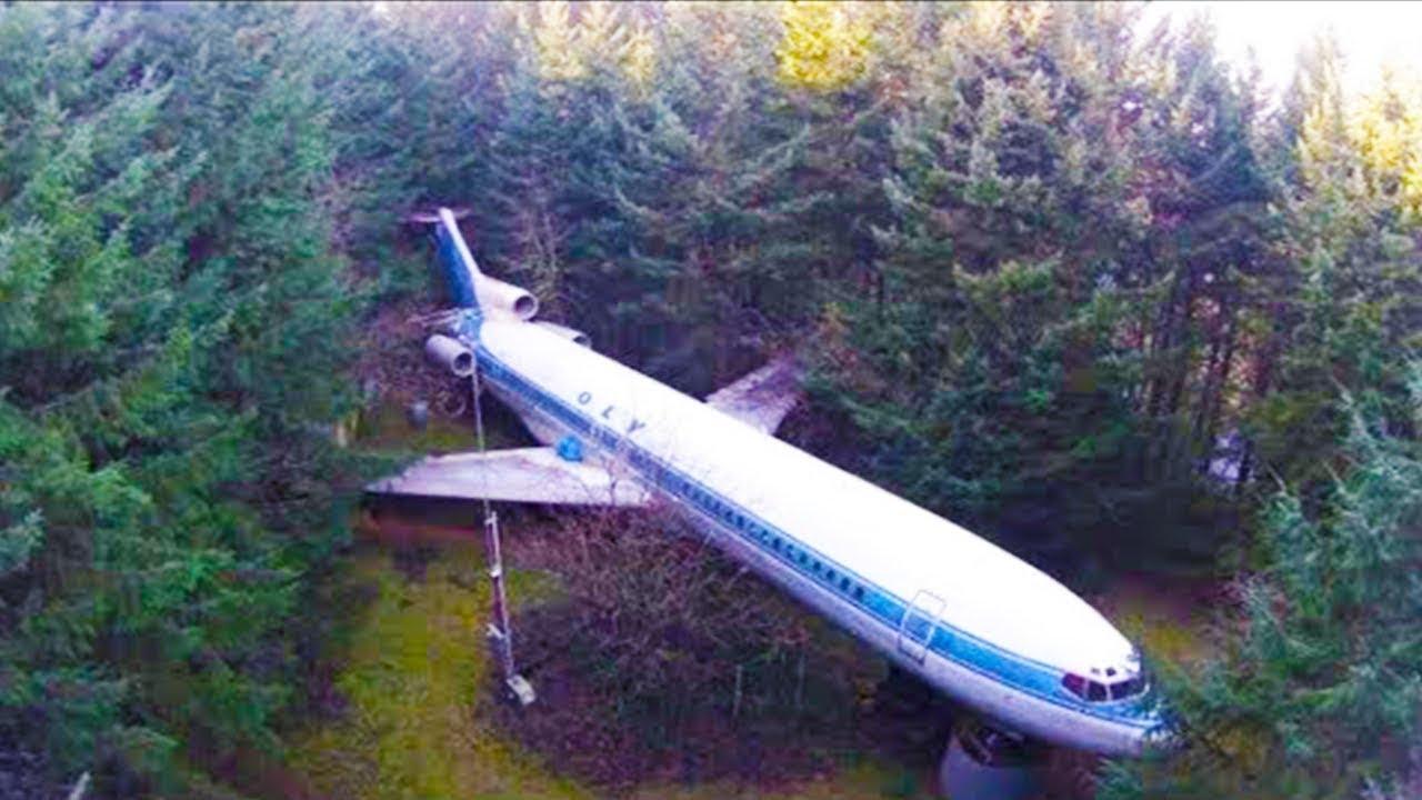 عثر رجل على طائرة مهجورة في الغابة ، لن تصدق ما الذي حدث بعد ذلك