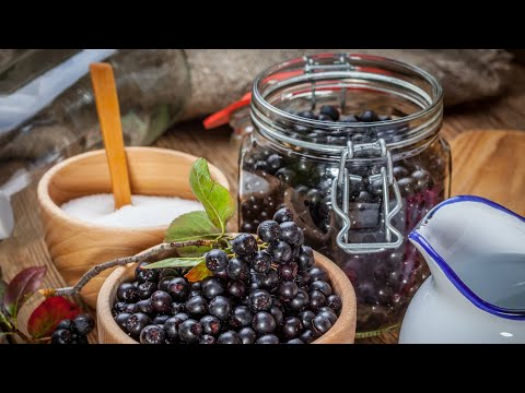 Aronia Berry Health Benefits (aka Chokeberries), Plus 3 Tasty Recipes