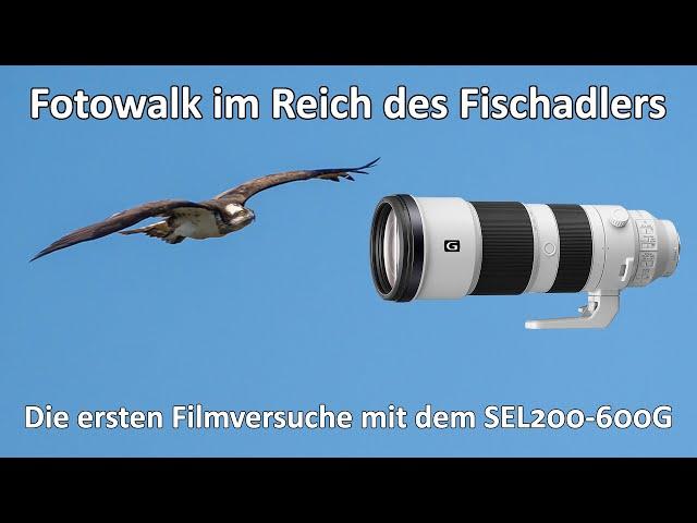 Fotowalk im Reich des Fischadler - Filmtest mit dem SEL200-600G - Farbprofil - Osprey - ND-Filter