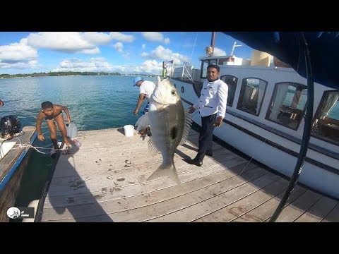 Ep#5- Shore Fishing In The North Part Of Mauritius