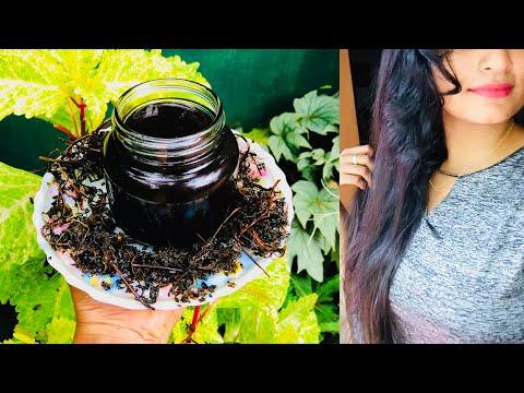 දවස් 15න් දෙගුණයක් වේගයෙන් හිසකෙස් වවන ඖෂධිය රහස් තෙල | Homemade Herbal Hair Oil