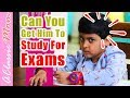 How To Study For Exams - How To Study For Exams In One Day