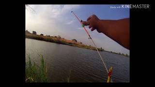 Рибалка в Алмати.Ловля Товстолоба