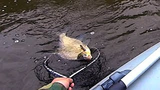 17 Рыбалка у плотины на реке Ворона. Ультралайт, микроджиг. Голавль, окунь, лещ, шемая