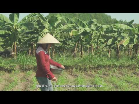 Vietnam - Transform waste into opportunity
