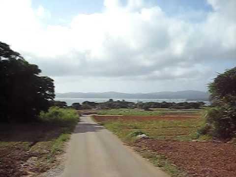 古宇利島の高台から自転車で一気に下る