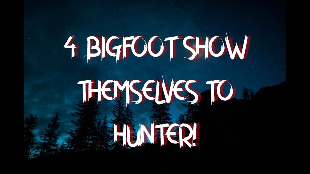 4 BIGFOOT SHOW THEMSELVES TO HUNTER!