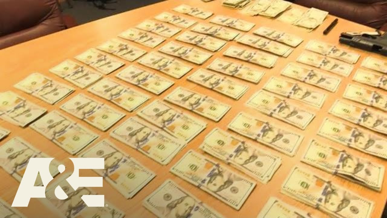 Download Live PD: Top 7 Biggest Money Busts | A&E