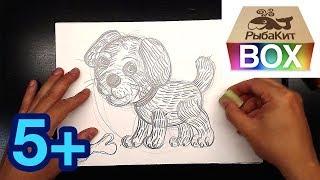 Как нарисовать СОБАКУ простым карандашом