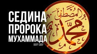 Суры, из-за которых пророк Мухаммад стал СЕДЫМ...