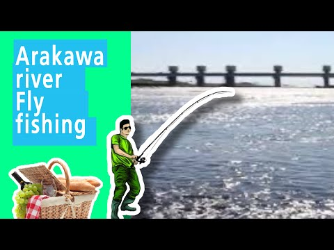Arakawa River : Fly Fishing