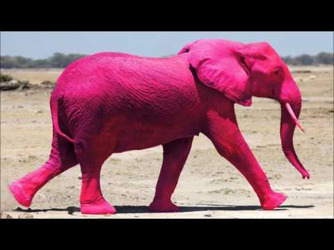 Hardbouncer - Pink Elephants