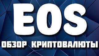 EOS криптовалюта обзор, где и как купить, кошелек, прогноз курса и перспективы