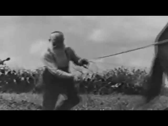 Zusha Rivkin - Documentary video