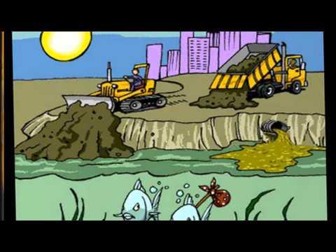 Video ô nhiễm môi trường nước