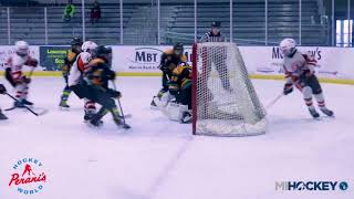 2018 MAHA Pee Wee A State Championship (Compuware vs. Troy Sting)
