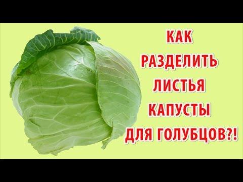 Как приготовить цветную капусту – Цветная капуста рецепты