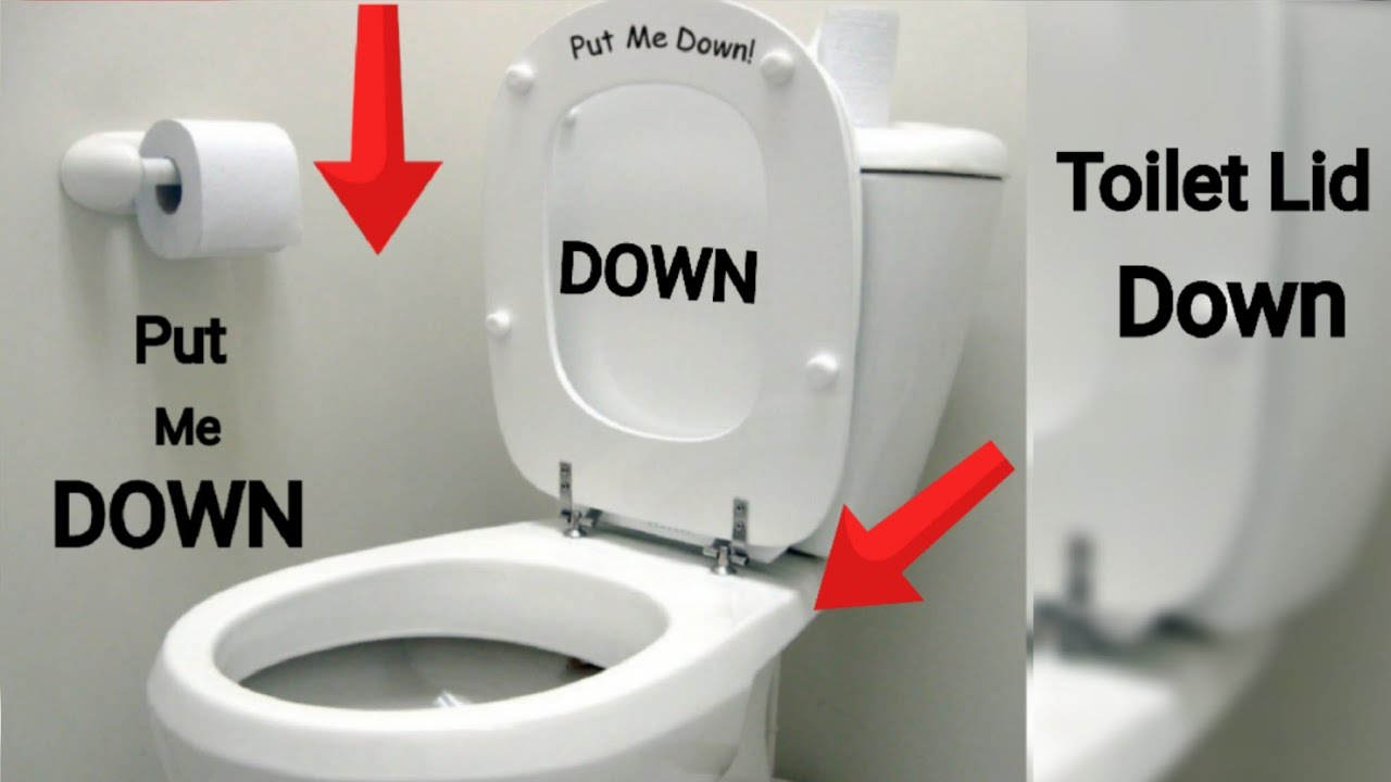 The Toilet Lid Down How To Use
