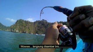 Nusakambangan Ikannya Ngeri2, Ga Mau Berhenti Kaya Ditarik Truck Tronton