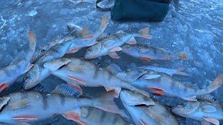 Зимняя рыбалка на Оке Первый лёд на РЕКЕ Ловля на безмотылку Зима порадовала