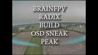 BRAINfpv RADIX BUILD   OSD SNEAK PEAK!! SWEET!!