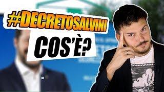 Cos'è il Decreto Salvini? Funzionerà?