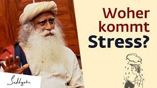 Woher kommt Stress?