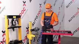 Desmontar Caja Cojinete Rueda BMW - vídeo tutorial