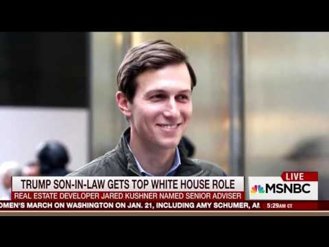Morning Joe Praises Jared Kushner Being Named Senior Advisor To Trump