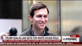 Morning Joe Praises Jared Kushner Being Named Senior Advisor To Trump