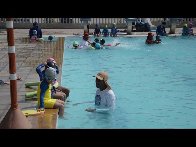 ¡Sábado de piscina! Clases de natación en el complejo acuático Vida, piscina Olímpica