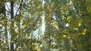 Play Modigliani (Requiem Mass)